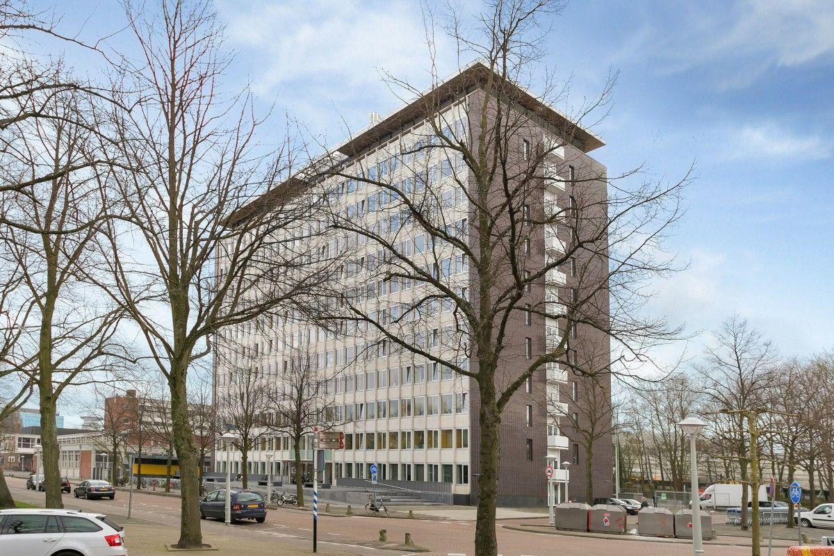 Blog 21 Dutchies Hostel Blackjack A Guide To Gambling In Amsterdam Dutchies Hostel